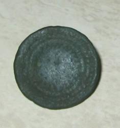 muntfibula