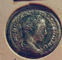Denarius Severus Alexander front